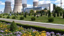 заводы и цветы
