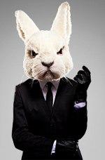 кролик в пиджаке и перчатках