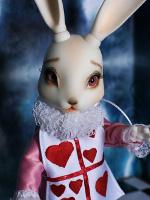крольчиха в милом платье