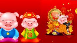 свиньи китайский гороскоп
