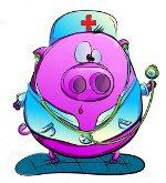 свинья в медицинском залате