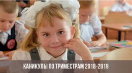Школьница с бантиками