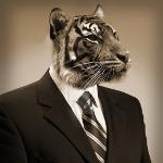 тигр в костюме