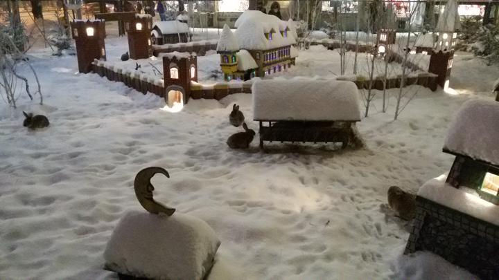 Погода в Риге в январе