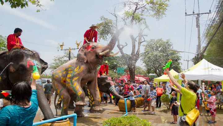 слон обрызгивает водой людей