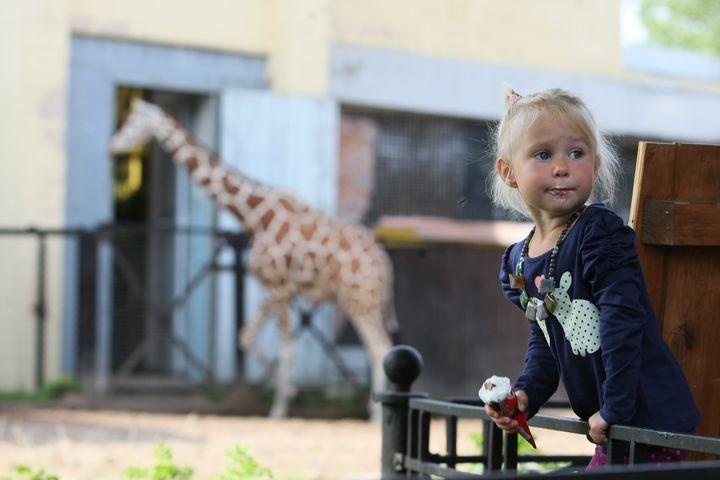 Девочка в зоопарке
