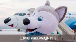 Символ универсиады 2019