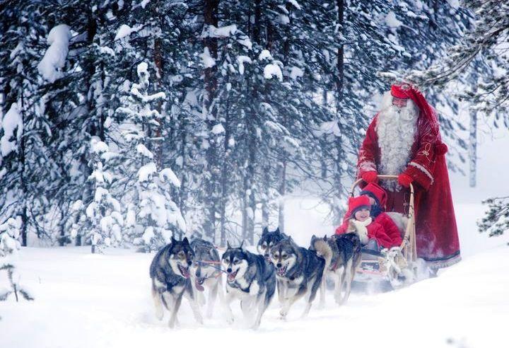 Дед Мороз катается на санях с упряжкой