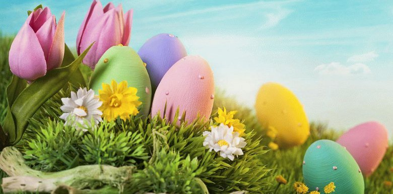 крашенные яйца и цветы