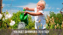 Девочка поливает цветы на даче