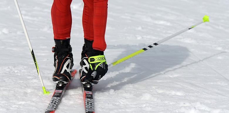 Чемпионат мира по лыжным гонкам