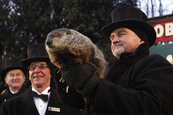 Groundhog Day in Panksatoni