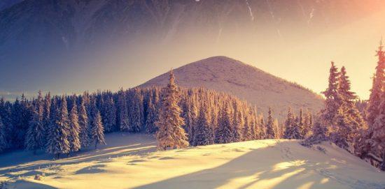 восход солнца над зимним лесом