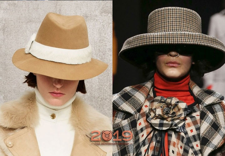 Стильные шляпы зимы 2018-2019 года