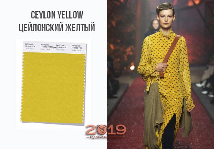Ceylon Yellow осень-зима 2018-2019