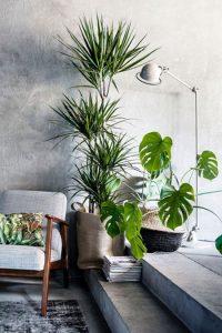 Модный эко стиль в интерьере квартиры