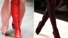 Модные цвета женских сапожек 2018-2019 года