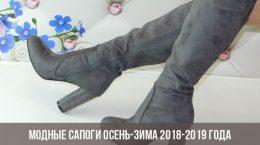 Модные сапоги осень-зима 2018-2019 года