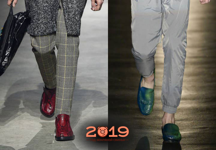 Цветные мужские туфли 2019 года
