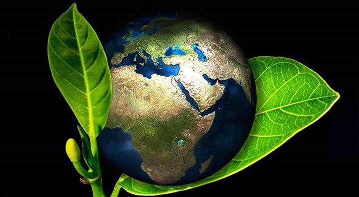 Планета и молодой росток