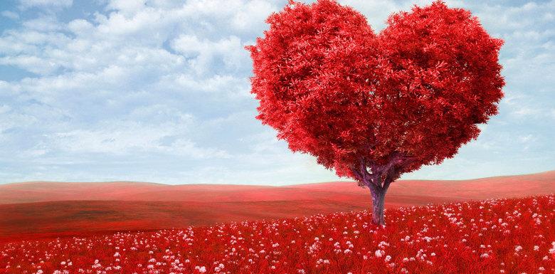 красное дерево в форме сердца на красной поляне