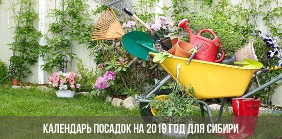 Календарь посадок на 2019 год для Сибири