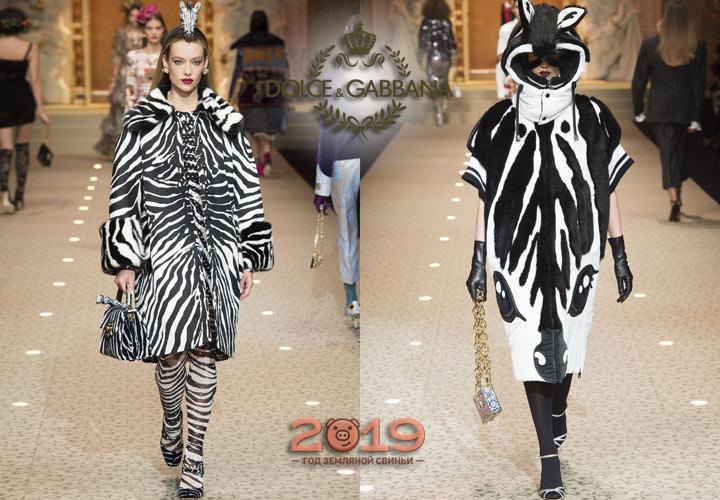 Зебра - модный принт коллекции Дольче Габбана 2019 года