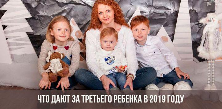 Сумма выплат на 3 ребенка в России в 2019 году