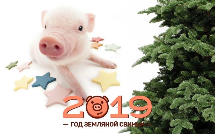 Новый Год 2019 картинки