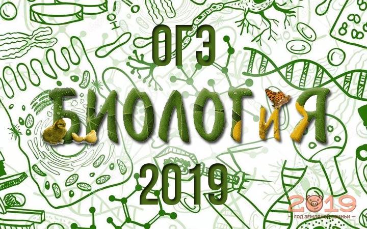 OGE calendar of biology in 2019
