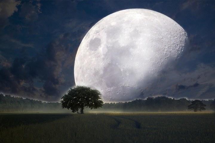 поле на фоне полной луны