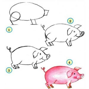 Рисуем свинку поэтапно