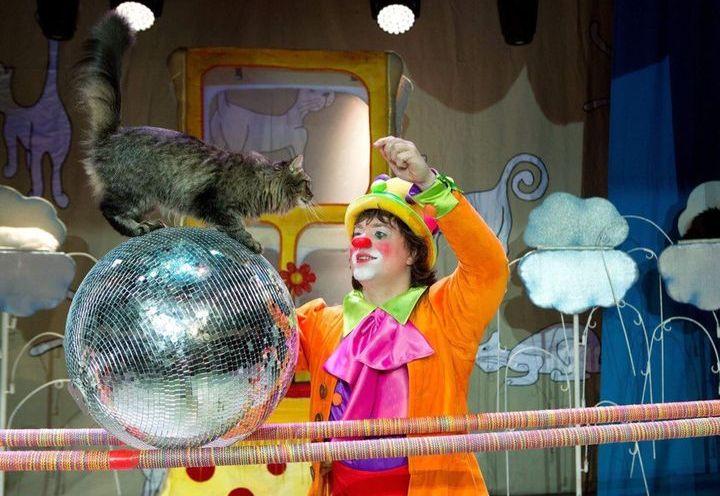 Спектакль В. Куклачева «Новый год и кошки»