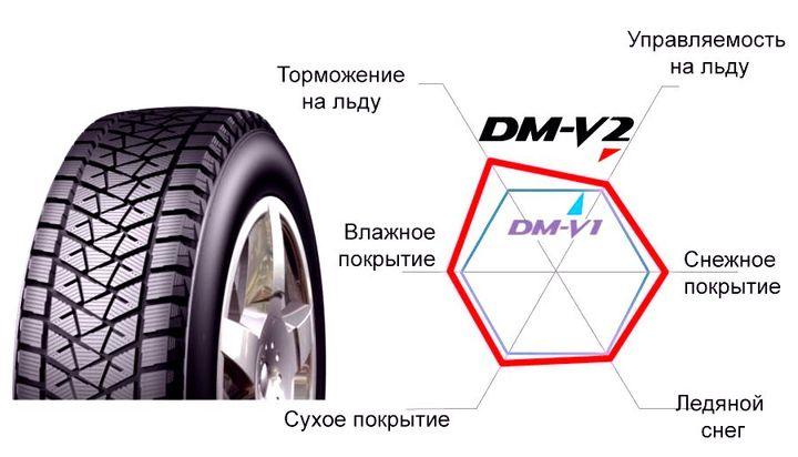 Зимние шины Bridgestone Blizzak DM