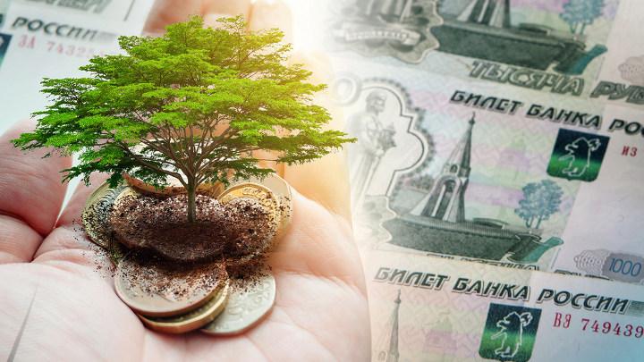 дерево на монетах в ладони на фоне денег