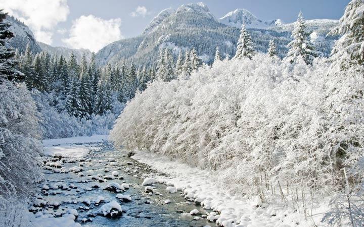 Снежная зима в Краснодаре