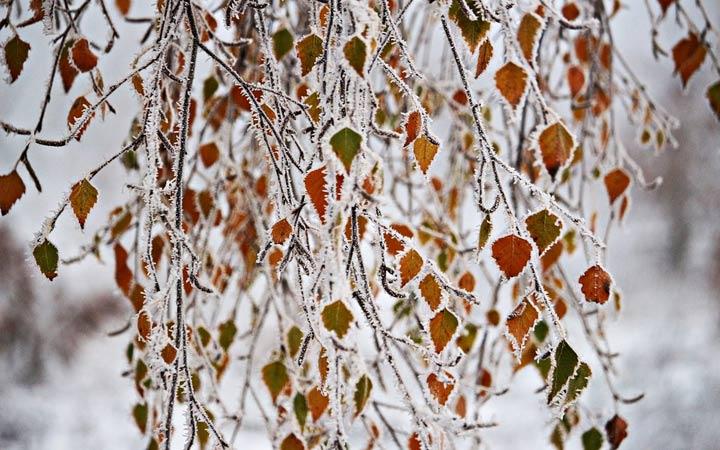 Зима 2019 в Челябинске народные приметы