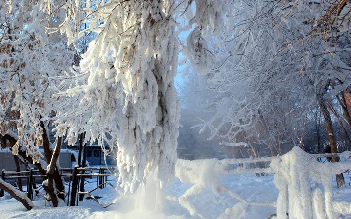 Погода зимой в Новосибирске в 2019 году
