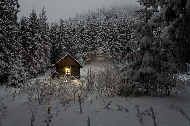 Хижина в зимнем лесу