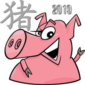 Символ 2019 года
