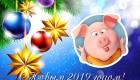 Веселая открытка к Новому 2019 году Свиньи