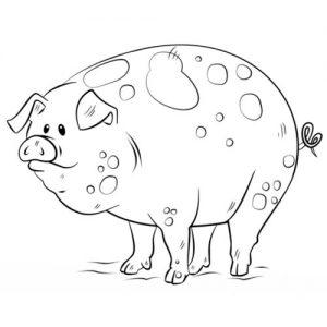 Свинка для раскрашивания