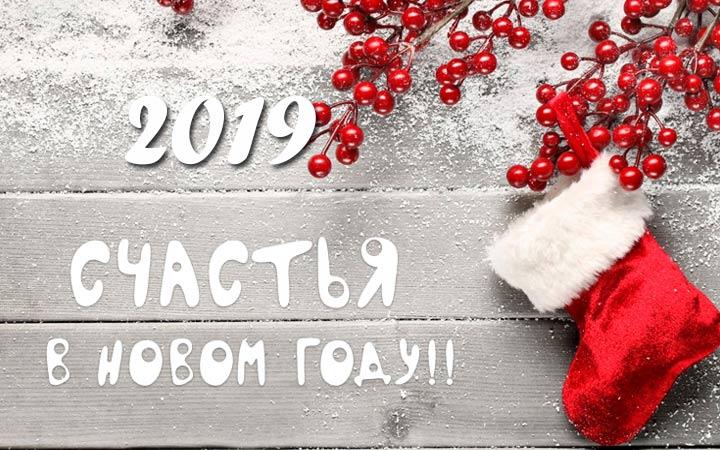 pozdravleniya-s-novym-2019-godom-106.jpg