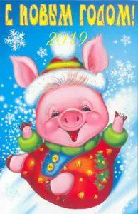 Новогодняя свинка 2019 год