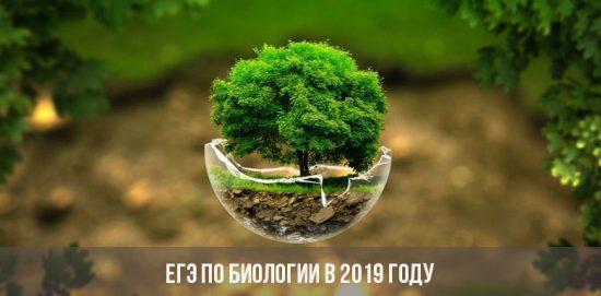 ЕГЭ по биологии в 2019 году