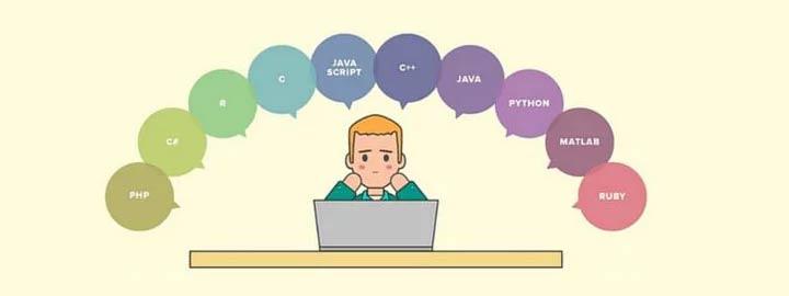 Языки программирования в школе 2018-2019 год