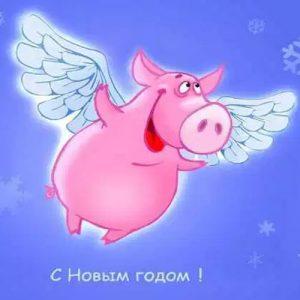 Новогодняя открытка со свинкой на 2019 год
