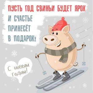 Новогодняя свинка на 2019 год