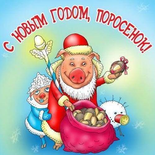Открытка с прикольным Поросенком на 2019 год