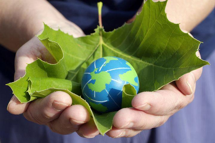 Экологический налог в 2019 году